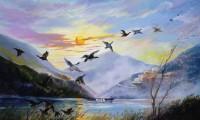 Volo di anatre sul lago